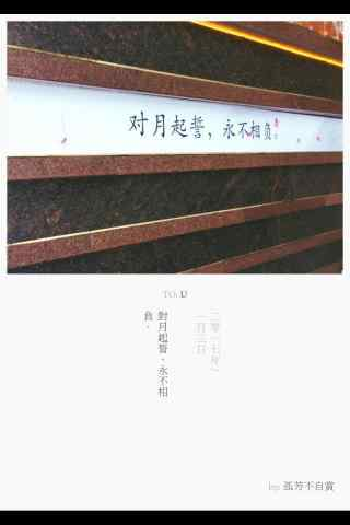 《孤芳不自赏》文艺文字海报