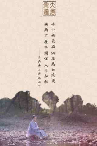大唐荣耀创意手机壁纸