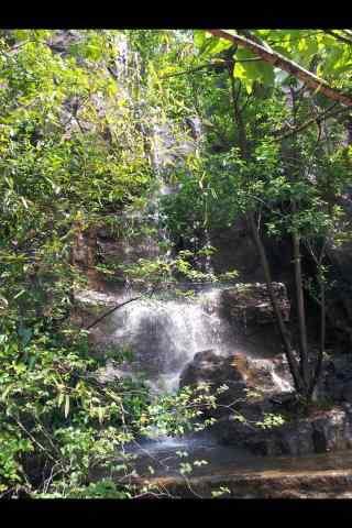 南山竹海的山涧溪水手机壁纸