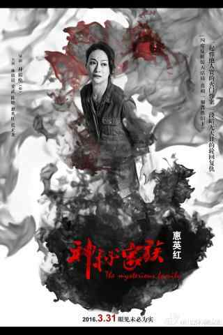 神秘家族黑白惠英红宣传海报