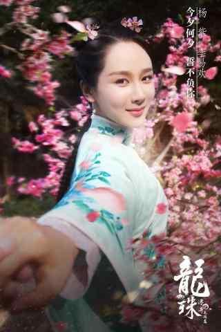 龙珠传奇朱易欢杨紫宣传海报