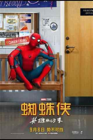 蜘蛛侠英雄归来手机海报
