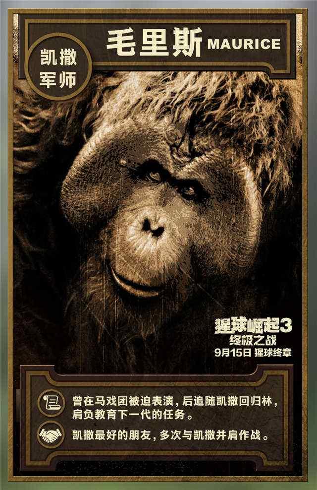 电影猩球崛起3凯撒手机壁纸