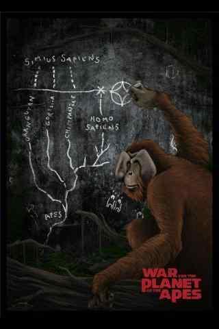 猩球崛起3终极之战猩猩手机壁纸