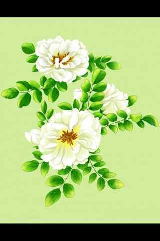 栀子花手绘花卉手