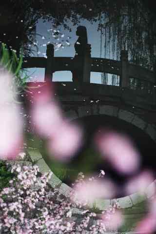 唯美的海棠花与桥上的美女倒映手机壁纸