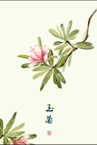 唯美手繪玉蘭花手機壁紙