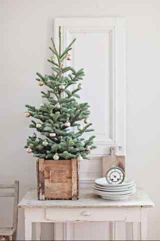 小清新圣诞树图片手机壁纸