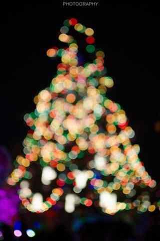 朦胧唯美的圣诞树图片手机壁纸