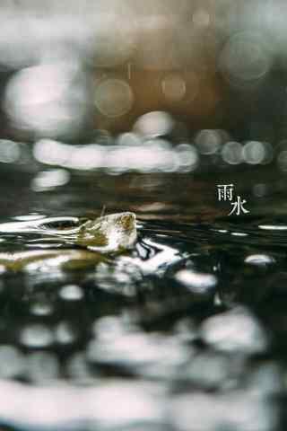 雨水节气-清澈的