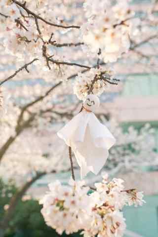 樱花树上的晴天娃娃手机壁纸