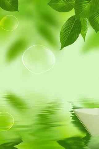 唯美的绿色植物手