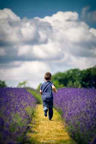 孩子奔跑在薰衣草