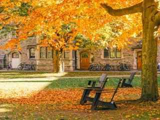 欧洲校园秋日风景