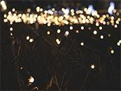 草坪上的一片灯光