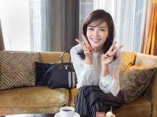 气质女星刘涛可爱俏皮电脑壁纸