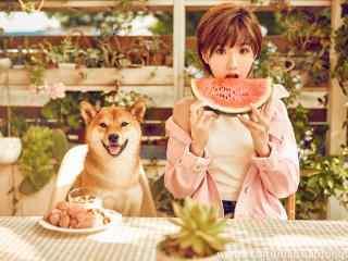 毛曉彤可愛夏日吃西瓜桌面壁紙