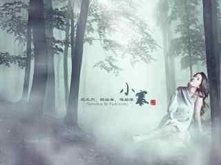 刘亦菲二十四节气小寒节气壁纸