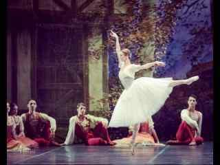 唯美的芭蕾独舞演出图片壁纸桌面