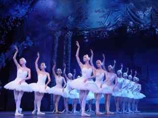 唯美的芭蕾舞演出美女芭蕾舞者桌面壁纸