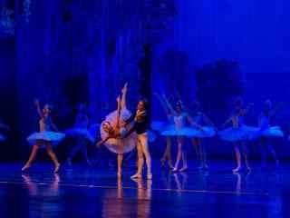 唯美的芭蕾舞演出图片壁纸桌面
