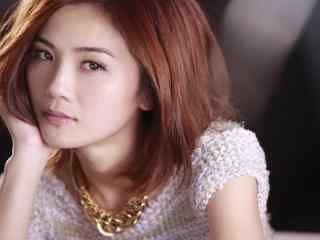 蔡卓妍唯美写真桌面壁纸