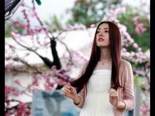 郭碧婷樱花树下唯美写真图片