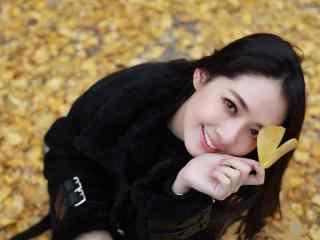 郭碧婷银杏树下唯美写真图片桌面壁纸