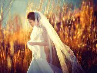 唯美美女超好看婚
