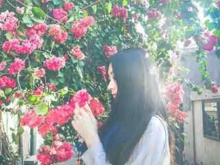 美女与花朵唯美图