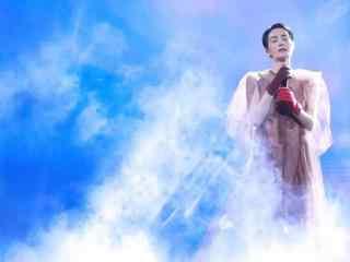 王菲幻乐一场演唱会唯美清新图片高清桌面壁纸