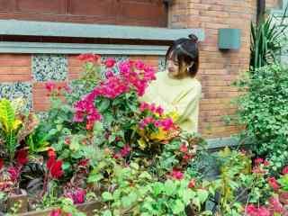 花园里的美女图片桌面壁纸