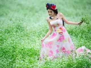 美女荞麦花海写真图片