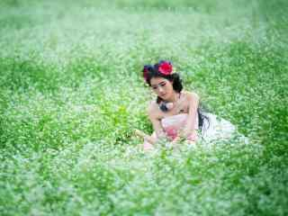 荞麦花海中的美女写真图片