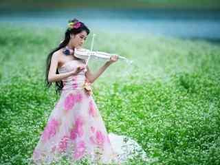 荞麦花海中的拉小提琴的美女