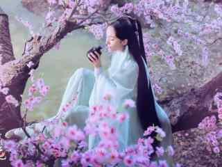 唯美桃花林中的白浅图片