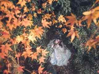 汉服交领儒裙—枫叶树下的少女桌面壁纸