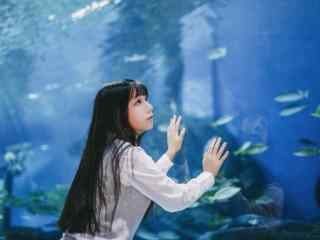 JK制服—可爱的少女趴在水族馆桌面壁纸