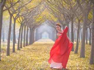 银杏树下的红衣美女桌面壁纸