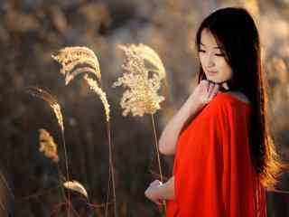 芦苇荡里的红衣美女写真壁纸
