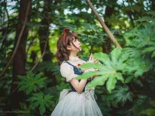 lolita洋装—树林里的可爱少女桌面壁纸