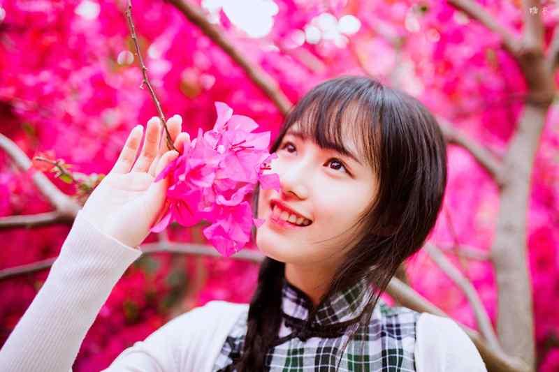 旗袍—花丛间的清纯少女桌面壁纸