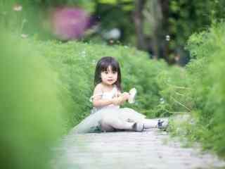 花丛间可爱的小哈琳桌面壁纸