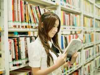 图书馆美女看书桌面壁纸