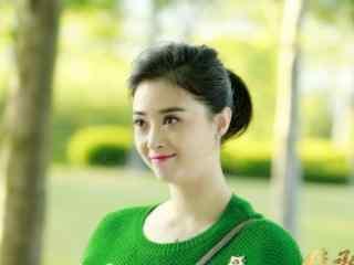 蒋欣新作继承人女律师汤宁桌面壁纸