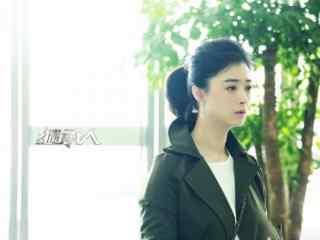 继承人汤宁蒋欣帅气桌面壁纸