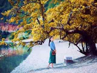 文艺美女泸沽湖边树下写真壁纸