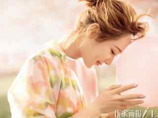 杨紫唯美写真高清桌面壁纸