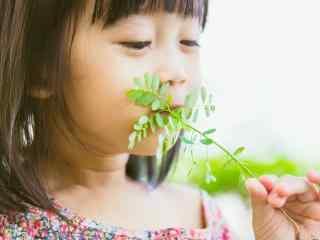 儿童节之呆萌可爱的小女孩壁纸