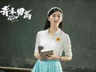 电影青禾男高景甜柳禾老师壁纸